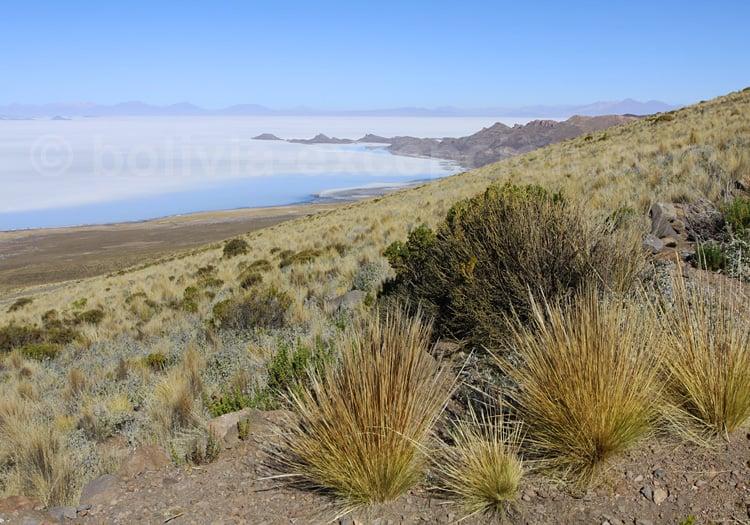 Salar d'Uyuni depuis le flanc du volcan Tunupa