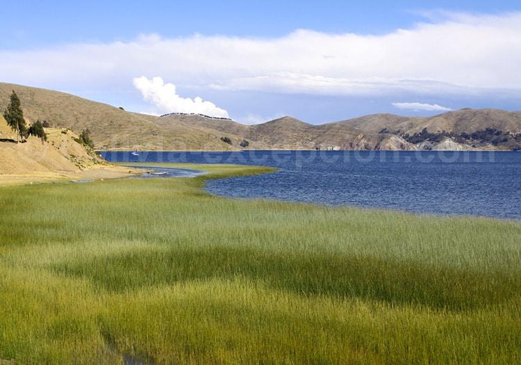 Rives du lac Titicaca
