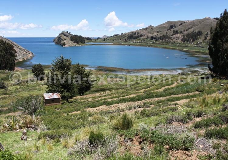 Baie de Titicachi, péninsule de Copacabana