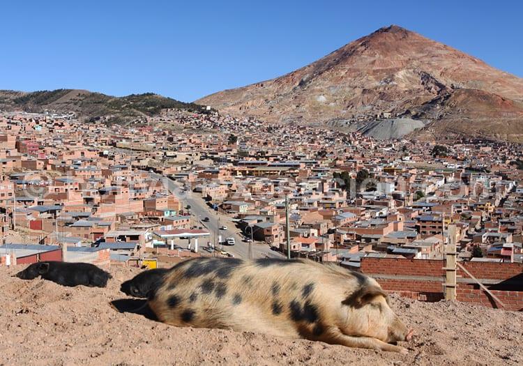 Ville de Potosí et Cerro Rico