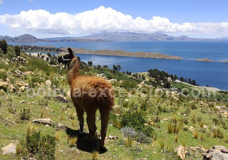 Climat du lac Titicaca