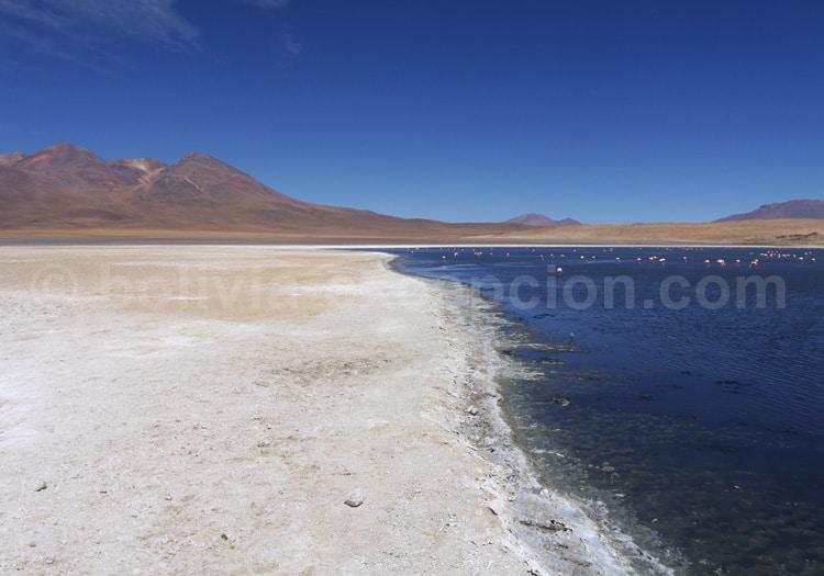 Laguna Cañapa, Lipez