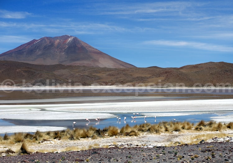 Laguna Chiarcota
