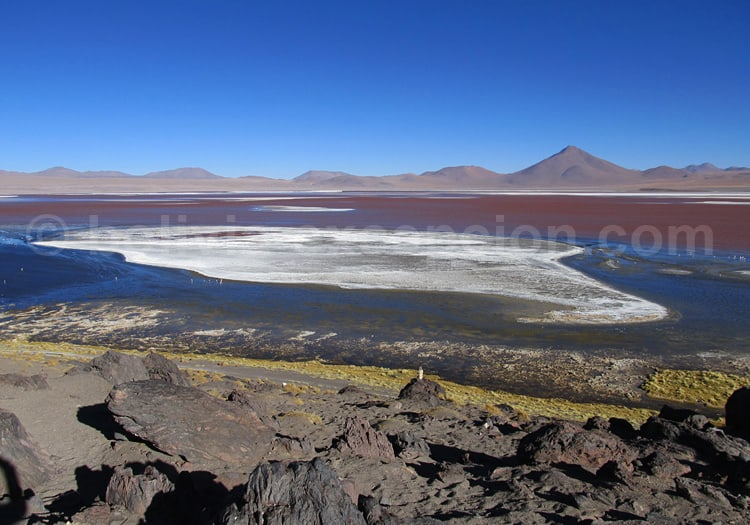Laguna Colorada, Lipez
