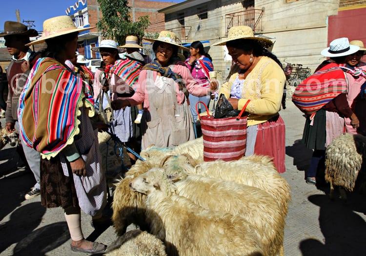 Marché de Punata, vallée de Cochabamba