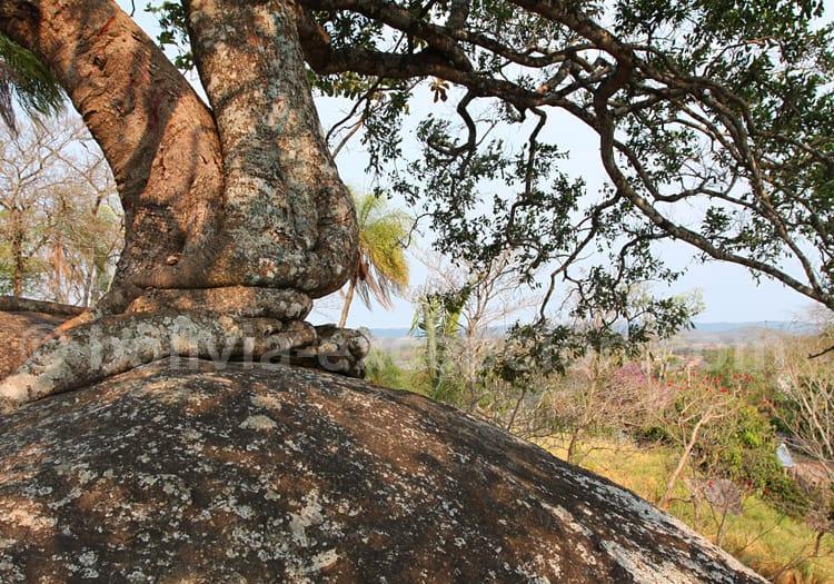 Mirador Piedra del Bibosi