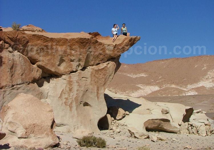 Excursion à Hierbas Buenas, Atacama