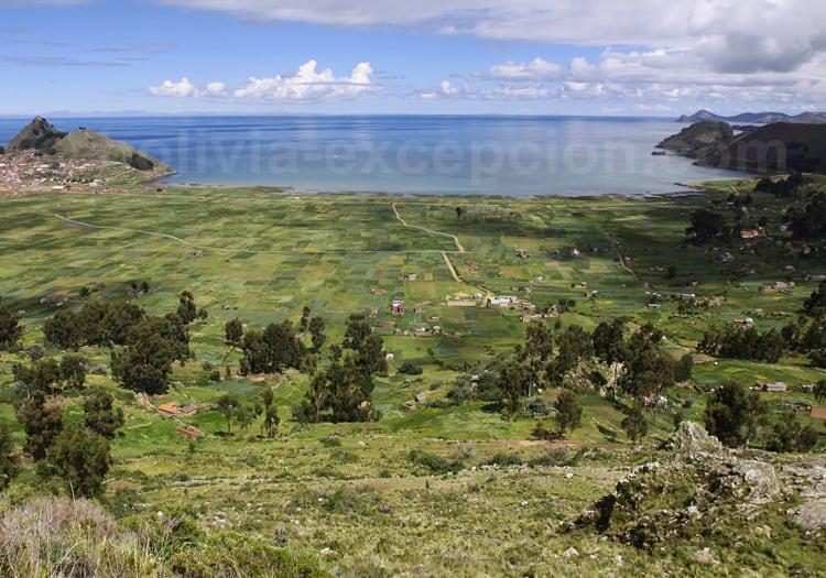 Que voir autour du lac Titicaca ?