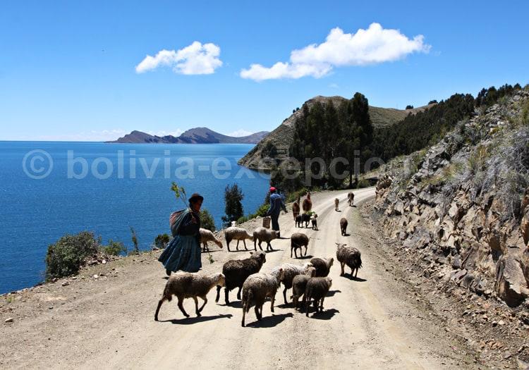 Exploration de la péninsule de Copacabana, Titicaca