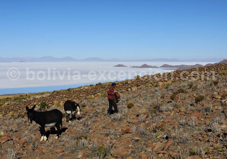 Salar de Uyuni vu du volcan Tunupa
