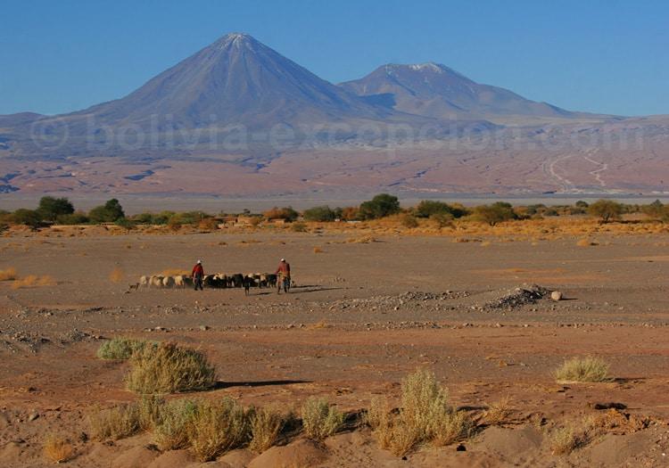Volcans Licancabur et Juriques