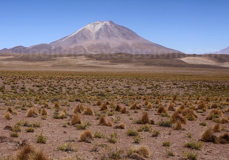 Volcan Ollagüe, 5.865 m