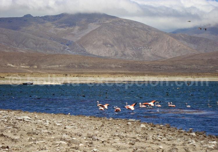 La Cuenca de Tajzara, site Ramsar