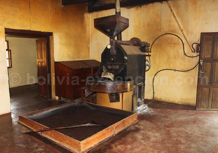 L'industrie du café en Bolivie