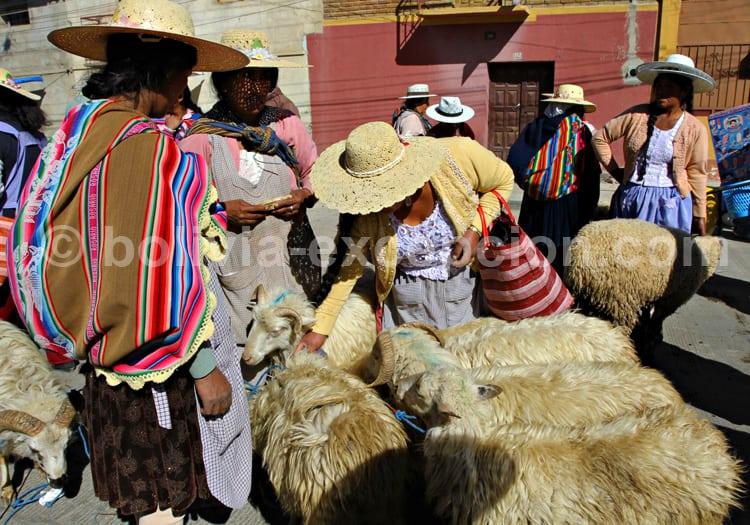 Les tissus andins, marché de Punata, Bolivie