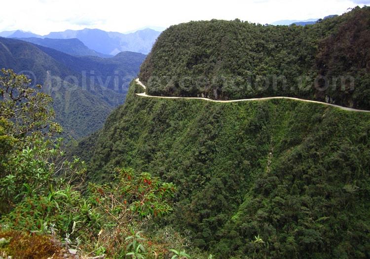Parc national de Cotapata, Yungas