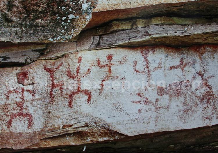 Peintures rupestres, musée Biocentro de Güembe