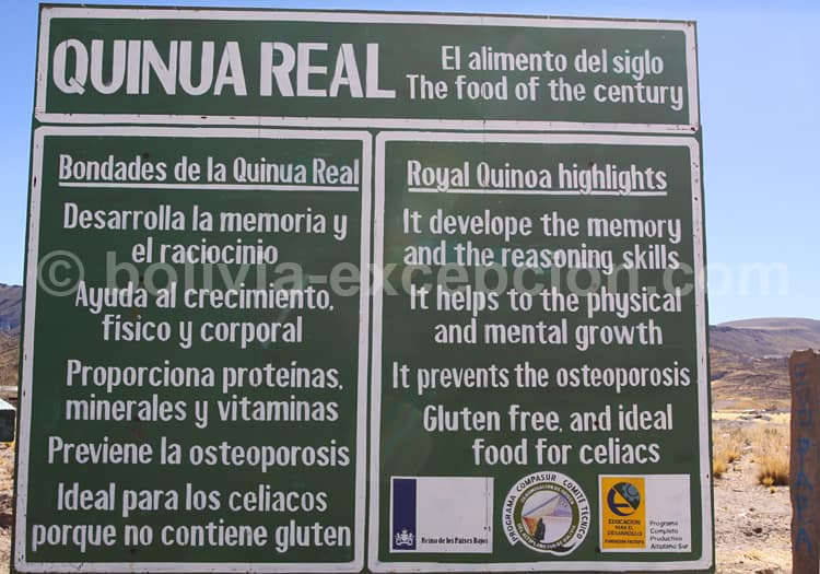 Promotion de la Quinoa en Bolivie