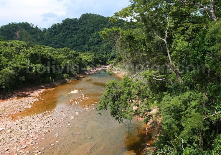 Reserva nacional de Flora y Fauna Tariquía