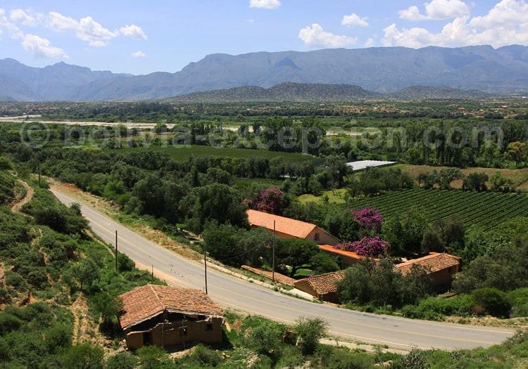 Département de Tarija