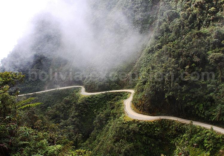 Route de la Mort, Yungas