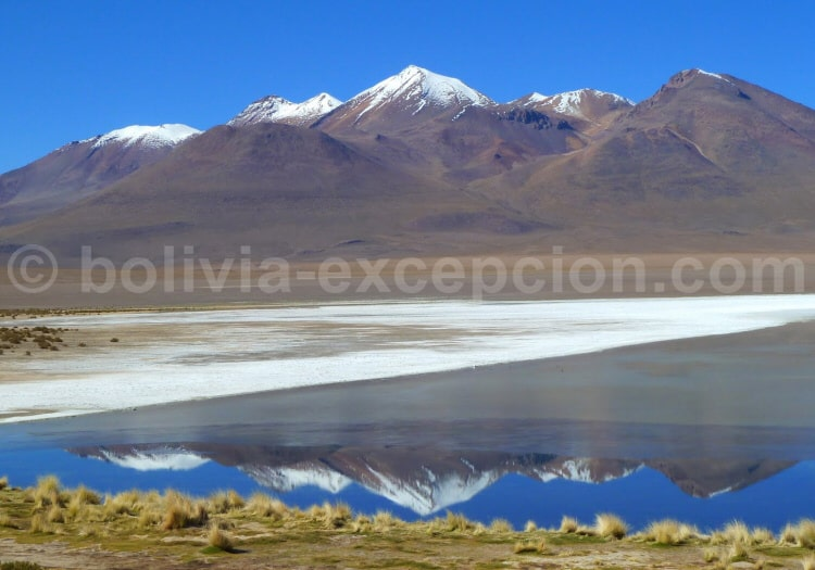 Panorama sur la laguna Cañapa montagnes et ciel bleu