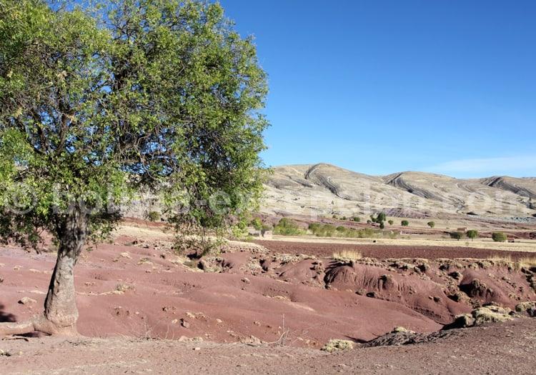 Cordillère de los Frailes, Bolivie