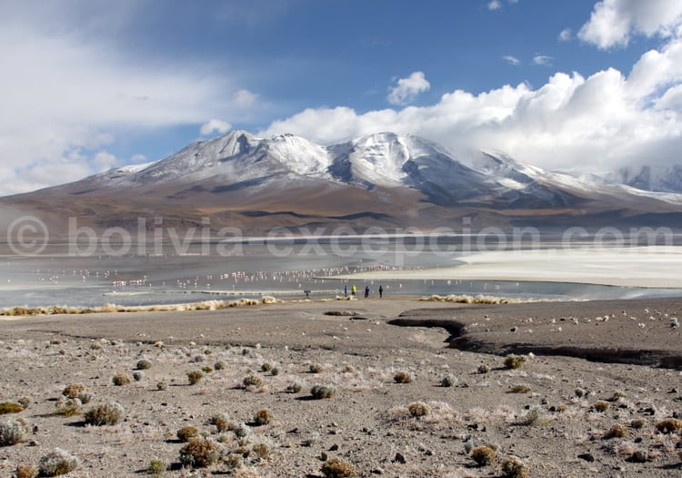 Province du Lipez incontournable de Bolivie
