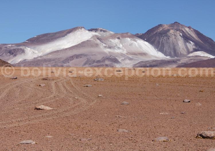 Désert de Dali, Bolivie