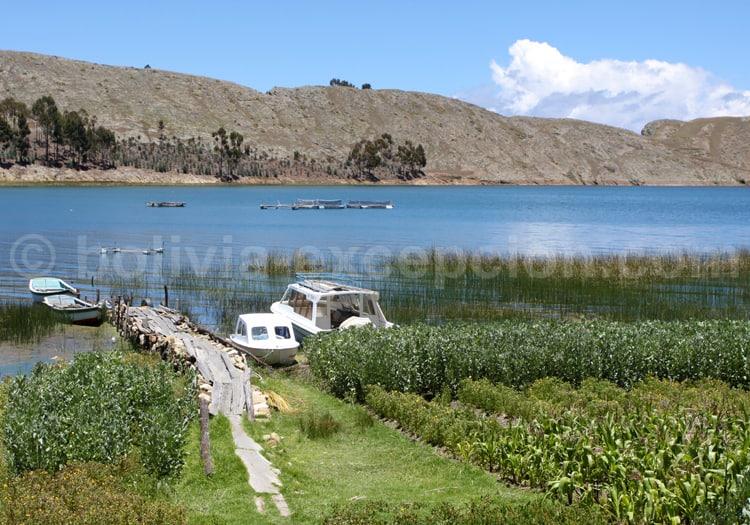 Navigation sur le Lac Titicaca