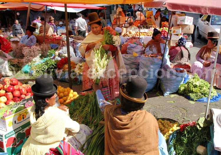 Chapeaux melon, Bolivie