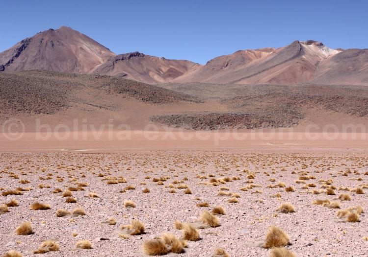Volcans, Désert de Dali
