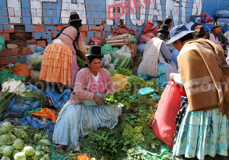 Tambo el Tejar, La Paz