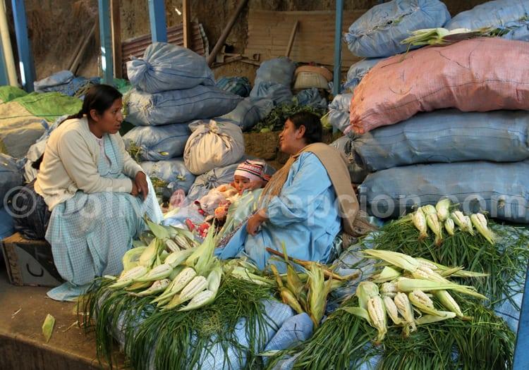 Variété de maïs blanc, Bolivie
