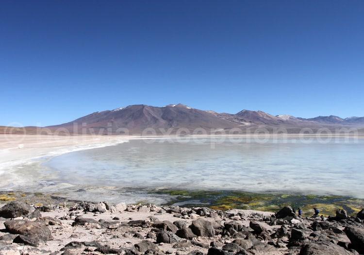 Laguna Blanca, Bolivie