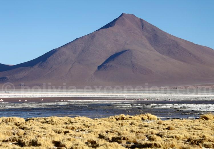 Altiplano bolivien, Lipez