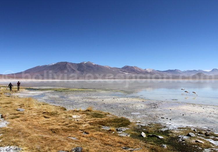Lac Blanc, Bolivie