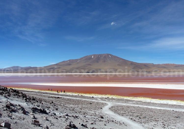 Altiplano potosino, Bolivia