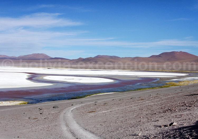 Salines, Laguna Colorada
