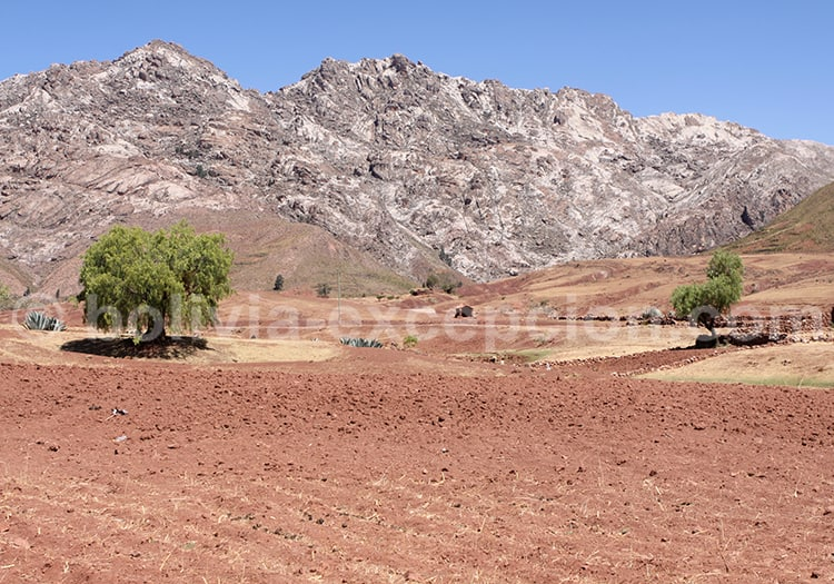Quila Quila, Bolivie