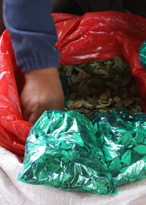 L'économie de la coca en Bolivie