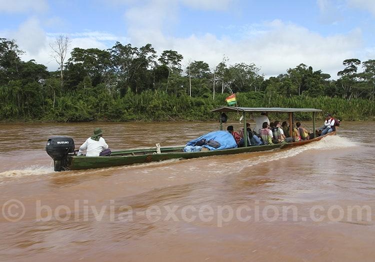 Piroque sur fleuve Amazonie verte
