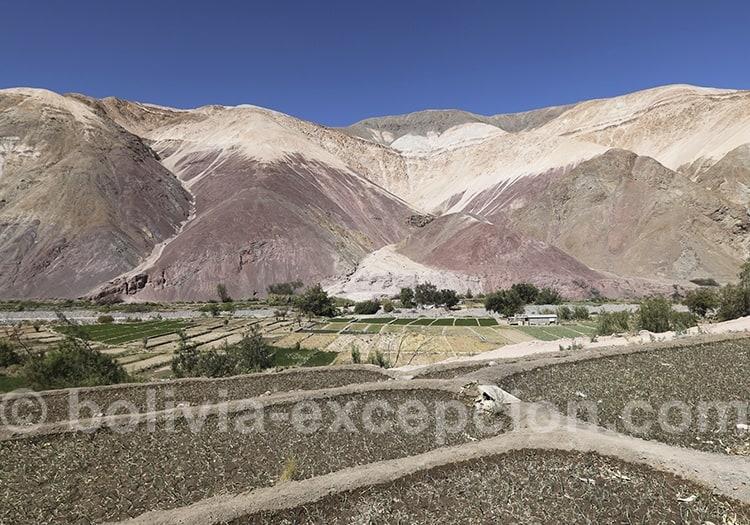 Exploration de la vallée de Camiña