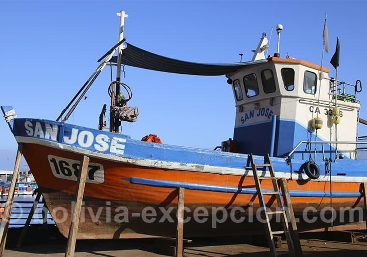 Port des pêcheurs à Iquique