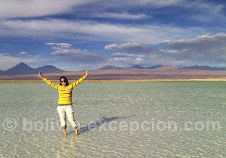 Découverte de l'Atacama, lagune Chaxa