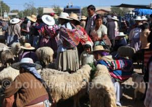 Journée Valle Alto, marché de Cliza