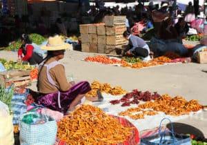 Importance du piment dans la cuisine bolivienne