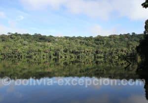 Lagune Chalalan, Madidi