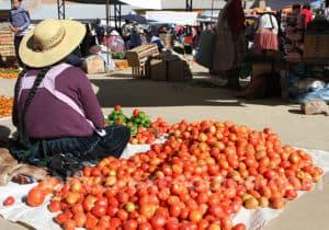 Marchande de tomates à Cliza