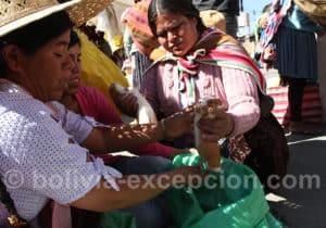 Le cuy au marché de Punata